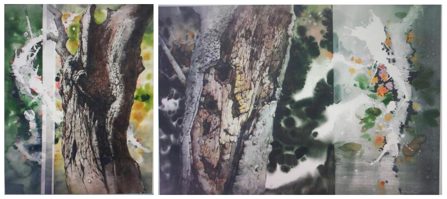 고목수채6.jpg
