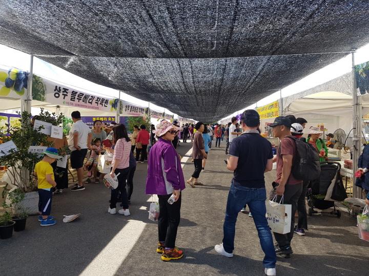 [크기변환][기술보급과]관광과 특산품을 한번에! 상주베리축제 개최(2018 행사 모습).jpg