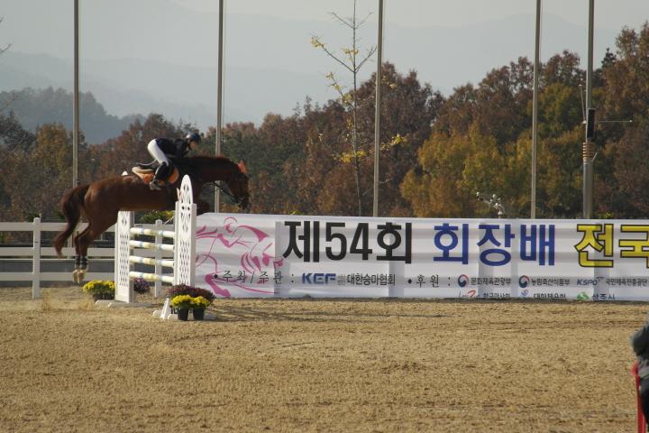 [크기변환]사본 -지난해 11월 열린 회장배 전국승마대회 장애물 경기 모습.jpg
